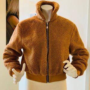 Lanshifei Teddy Bear Coat Small